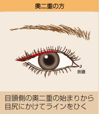 奥二重の方:目頭側の奥二重の始まりから目尻にかけてラインをひく