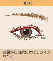 二重の方:目頭から目尻にかけてラインをひく