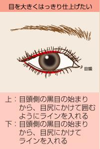 目を大きくはっきり仕上げたい:(上)目頭側の黒目の始まりから、目尻にかけて囲むようにラインを入れる/(下)目頭側の黒目の始まりから、目尻にかけてラインを入れる