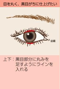 目を黒く、黒目がちに仕上げたい:(上下)黒目部分に丸みを足すようにラインを入れる