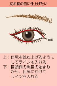 切れ長の目に仕上げたい:(上)目尻を跳ね上げるようにしてラインを入れる/(下)目頭側の黒目の始まりから、目尻にかけてラインを入れる